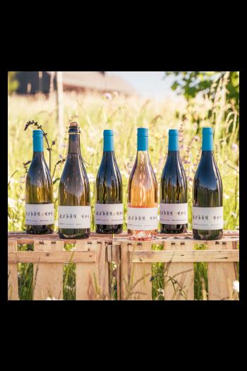 Weinbox - zum Kennenlernen